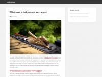 1stdivision.nl