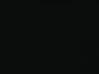 bronzenbeeld.nl