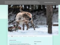 Blog Zweden