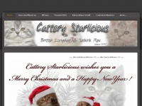 cattery-starlicious.be
