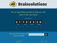 brainsolutions.be
