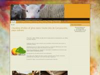 Chambre d'hôtes et gites dans l'Aude près de Carcassonne, pays cathare