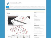 linkbuildingpakketten.com