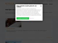 struijkijzerenmetalen.nl