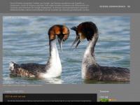 6mb22va.blogspot.com