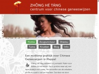 Centrumvoorchinesegeneeswijzen.nl - Zhōng Hé Táng - Centrum voor Chinese Geneeswijzen in Meppel - Acupunctuur - Shiatsu - Chinese kruiden