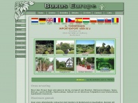 buxus-europe.nl
