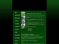 Buxusgigant.nl - Buxus sempervirens planten