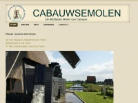 cabauwsemolen.nl