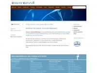 caesar-consult.nl