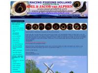 pigeonsalesvanalphen.com