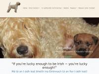 camacha.nl