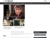 indespiegel.nl