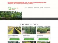 Topkwaliteit taxus haagplanten en taxusstruiken