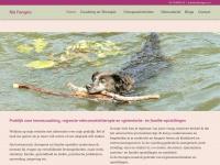 riafongers.nl