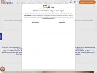 nestlebabyvoeding.nl