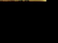 wensulance.nl
