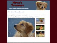 Toller kennel Nova's Treasure | Nova's Treasure