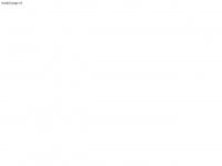 roi-support.com