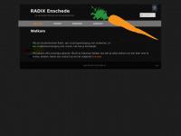 radixenschede.nl