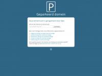 vanwijkgeveltechniek.nl