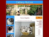 cattery-rulive.nl