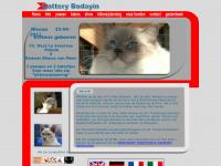 catterybodayin.nl