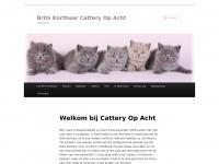 catteryopacht.nl