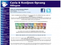 caviaopvanghillegom.nl