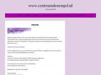 Centrumdenengel.nl - Spiritueel en Coaching Centrum Den Engel – Coaching, Counseling, Energetisch werken, familieopstellingen, meditatie, magnetiseren. Spiritueel Weekend. kvk 56908156.
