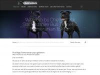 chelmstock.nl