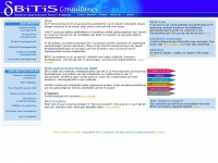 Bitis.nl - BiTiS Consultancy | Business Improvement Thru IT Solutions