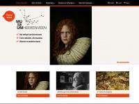 heerenveenmuseum.nl