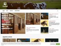 zoofast.nl