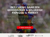 Birdbox Online