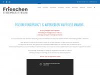 frieschen.nl
