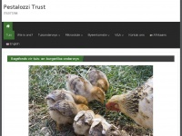 Pestalozzi.org - Pestalozzi Trust - IT6377/98