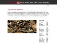 gallantmetaal.nl