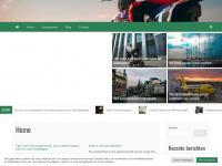 Verkeersregelaar-expert.nl