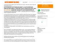 autoinkoopdejong.nl