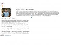 stuukkoning.nl