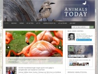 Animalstoday.nl - Home - Animals Today