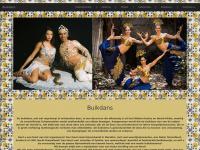 Buikdans, Buikdanseres, Orientaalse thema feest, orientaalse feest, Marokkaanse feest, berber feest, turkse feest, arabische feest, buik dans