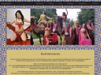 Buikdanseres, Orientaalse thema feest, orientaalse feest, Marokkaanse feest, berber feest, turkse feest, arabische feest