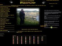 studioflits.com