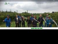 zeisles.nl