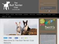 Thebullterrierclub.org - The Bull Terrier Club | WELCOME TO THE BULL TERRIER CLUB