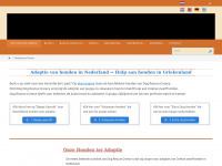 Dog Rescue Greece - Hulp aan en adoptie van Griekse zwerfhonden