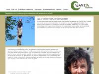 Wave Begeleiding | Home