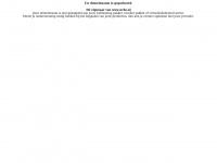 nvhs.nl | Domein te koop | domeindump.nl